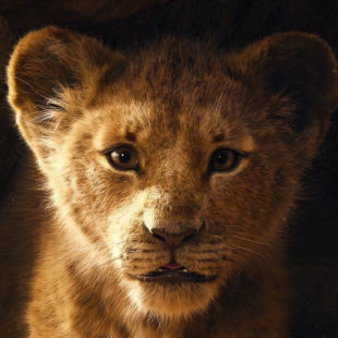 Un trailer plein d'émotions pour Le Roi Lion…