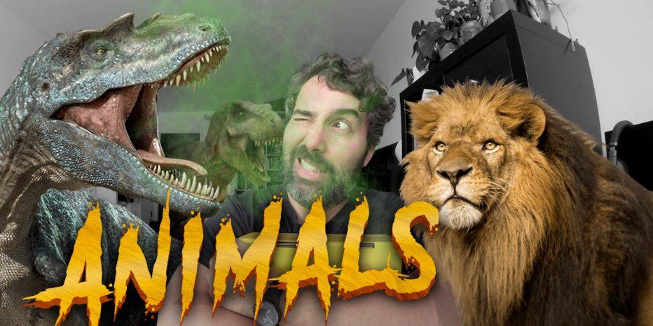 Découvrez la WOOTBOX «Animals» de Juin